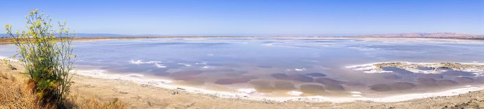 Panoramic view of the salt ponds at Alviso Marina County Park. Salt ponds at Alviso Marina County Park, Mission Peak and Monument Peak in the background, San Royalty Free Stock Photo
