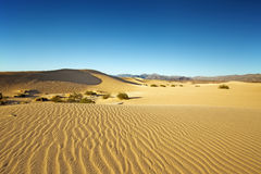 Panoramic view of the sand dunes Stock Photography