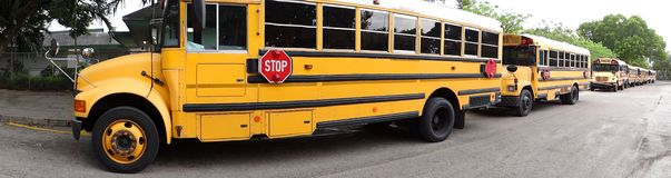 Panoramic view of school buses royalty free stock photo