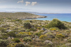Panoramic view of the sea coast with turquoise water. East coast Stock Photos