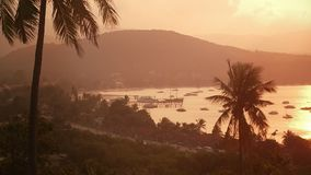 Panoramic view on sea ships and boat floating in evening sea port. Evening landscape tropical palm trees and misty hills on beautiful sea beach stock video