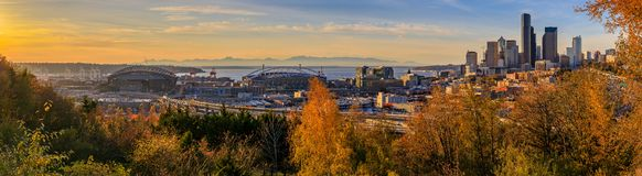 Panorama of Seattle downtown skyline at sunset in the fall with yellow foliage in the foreground from Dr. Jose Rizal Park. Panoramic view of Seattle downtown royalty free stock image