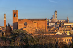 Panoramic view on Siena, Toscana, Italy. Stock Images