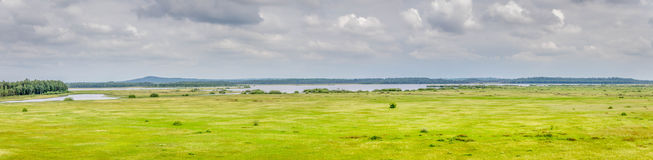 Panoramic view of a small bird lake in Sweden Royalty Free Stock Photography