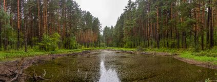 Panoramic view of a small lake in the forest near the talc stone quarry in the sverdlovsk region stock photos