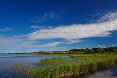 Panoramic view of the smooth surface  the lake with vegetation Stock Image