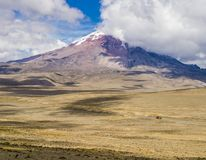 Panoramic view of snow capped Chimborazo volcano, Ecuador. Panoramic view of snow capped Chimborazo volcano, the farthest point from Earth`s center, Cordillera Stock Photos