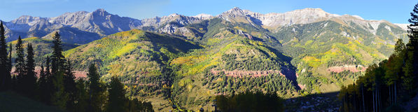Panoramic view of the snow covered mountains and yellow aspen Royalty Free Stock Photography