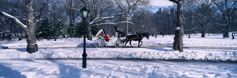 Panoramic view of snowy city street lamps, horse and carriage in Central Park, Manhattan, New York City, NY on a sunny winter day Stock Photos