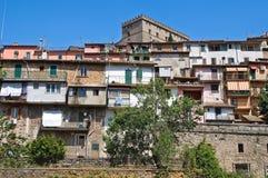 Panoramic view of Soriano nel Cimino. Lazio. Italy. Cityscape. Panoramic view of Soriano nel Cimino. Lazio. Italy Stock Photography