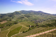 Panoramic view of South German vineyard, hills and fields.  stock photos