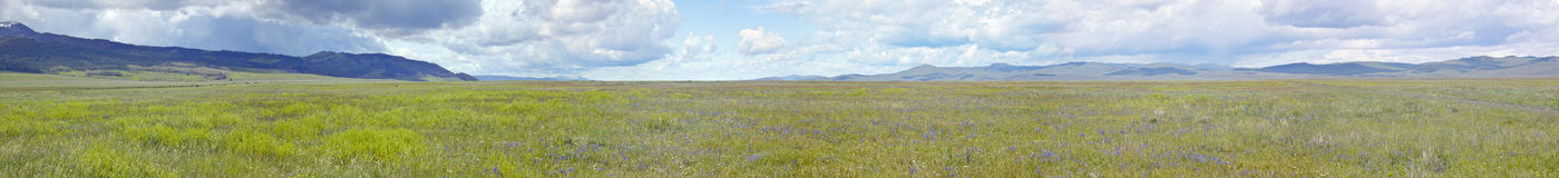 Panoramic view of spring grasslands and mountains in Centennial Valley near Lakeview, MT Royalty Free Stock Photography