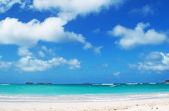 Panoramic view of St Jean beach, airport, eden, rock, St Barth, boats. The island of St Barth, relax, holidays, St. Barths, Saint-Barthélemy, in French West stock image