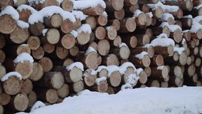 Panoramic view of stack of logs covered in snow on winter day. Panoramic view of stack of logs along road at sawmill covered in white snow on winter cloudy day stock video footage