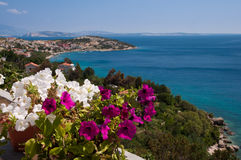 Panoramic view of Stara Baska sea and flowers - Krk - Croatia Royalty Free Stock Images