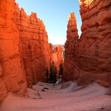 Panoramic view the switchback Navajo Trail in Bryce Canyon National Park. Panoramic view of the stunning switch back trail and rock formations of Navajo Trail royalty free stock photography
