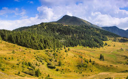 Panoramic view of summer landscape in mountains. Stock Photos
