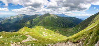 Panoramic view of summer mountains Royalty Free Stock Images