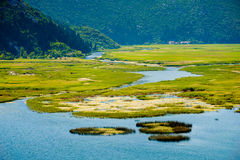 Panoramic view of swamp lake. Panoramic view of the marshy lake and hills in the background Stock Photography
