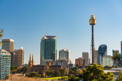 Panoramic view on Sydney CBD with Sydney tower and St Mary Cathe Royalty Free Stock Photo