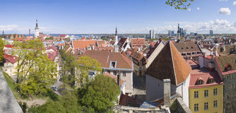 Panoramic view of Tallinn Royalty Free Stock Images