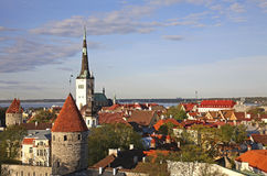 Panoramic view of Tallinn. Estonia Royalty Free Stock Photos