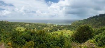 Panoramic view of taro fields near Keanae in Maui. Taro fields and agriculture near Keanae on the road to Hana in Maui, Hawaii Royalty Free Stock Photos