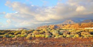 Panoramic view of Tenerife Royalty Free Stock Photo