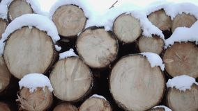 Panoramic view of timber of logs covered in snow on winter day. Panoramic view of timber of logs along road at sawmill covered in white snow on winter cloudy day stock footage