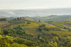 Panoramic view to Tuscany valley with vineyard fields Stock Photo