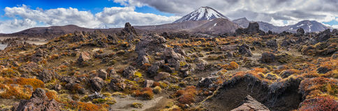 Panoramic view of Tongariro national park and Mt Ngauruhoe royalty free stock photo