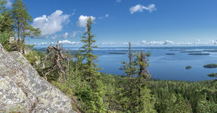 Panoramic view from the top of the Koli national park Royalty Free Stock Photography