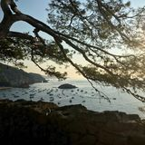 Panoramic view of Tossa de Mar - Costa Brava stock images