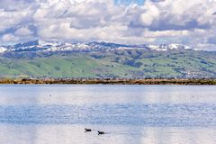 Panoramic view towards green hills and snowy mountains on a cold winter day taken from the shores of a pond in south San Francisco royalty free stock photos