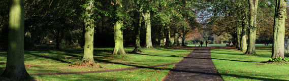 Panoramic view of tree lined walk on country estate. Royalty Free Stock Photography