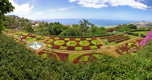 Panoramic view of Tropical Botanical Garden in Funchal city, Mad Royalty Free Stock Photography