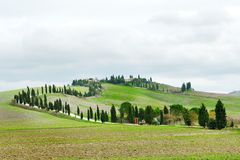 Panoramic view of the tuscan countryside, Tuscany. Italy Royalty Free Stock Photos