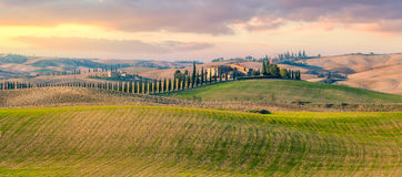 Panoramic view of  Tuscany countryside landscape Royalty Free Stock Images