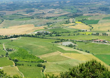 Panoramic view of Tuscany. Panoramic view of the Tuscan hills Stock Images