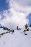 Panoramic view with two skiers and covered trees. Vertical view Stock Photography