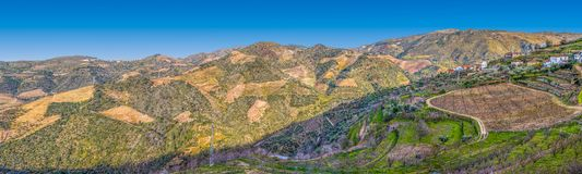 Panoramic view of the typical landscape of the Douro, in the north of Portugal stock images