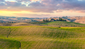 Panoramic view of typical Tuscany countryside landscape Royalty Free Stock Photos