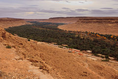 Panoramic view of valley oasis in Saraha Desert Stock Image