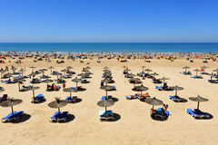 Panoramic view of Victoria Beach, Costa de la Luz, Cadiz, Andalusia, Spain Royalty Free Stock Photography