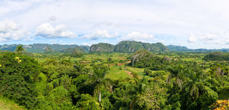 Panoramic view of the Vinales Valley in Cuba Royalty Free Stock Photography