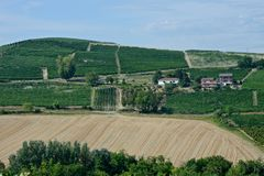 Panoramic view of a vineyard and plowed fields. And on the background an hill with some buildings royalty free stock photo