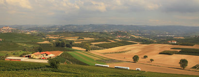 Panoramic view on vineyards and fields in Italy. Stock Image