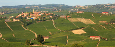 Panoramic view on vineyards in northern Italy. Royalty Free Stock Photos