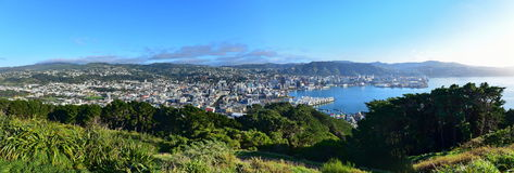 Panoramic view of Wellington city Royalty Free Stock Images