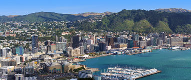 Panoramic view of Wellington Royalty Free Stock Image